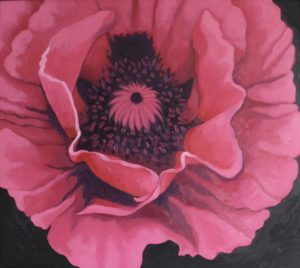 Hot Pink by CLARE GRAVENELL