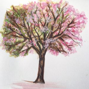 Blossoming tree by Lucy Harding