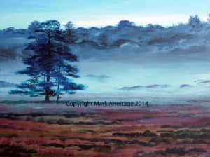 New Forest by A R M I