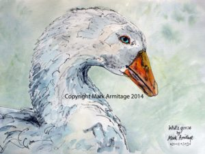 goose by A R M I