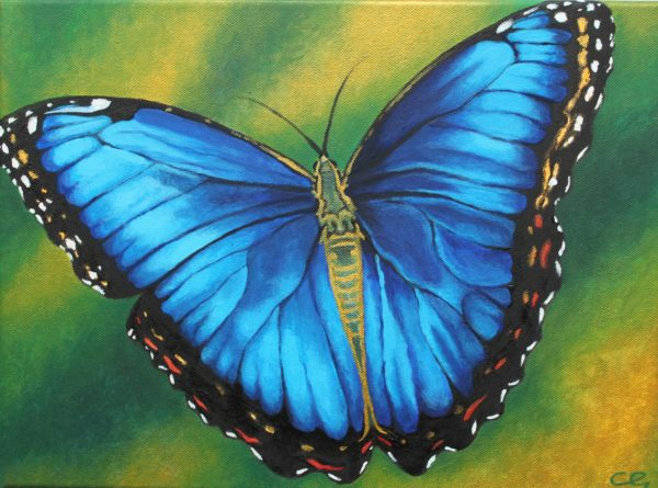 Blue, The Butterfly of Transformation by CLARE GRAVENELL