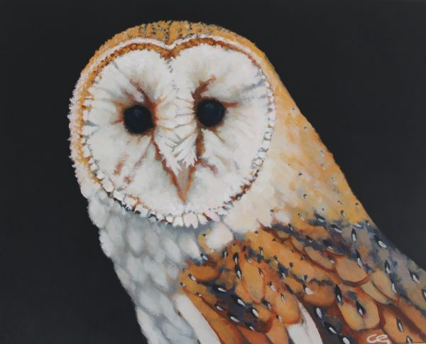 Owl, The Guardian by CLARE GRAVENELL