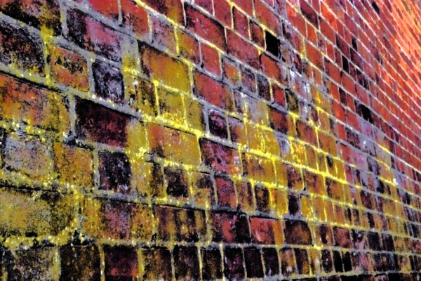 Back to the Highgate Wall by REaD Rhymes