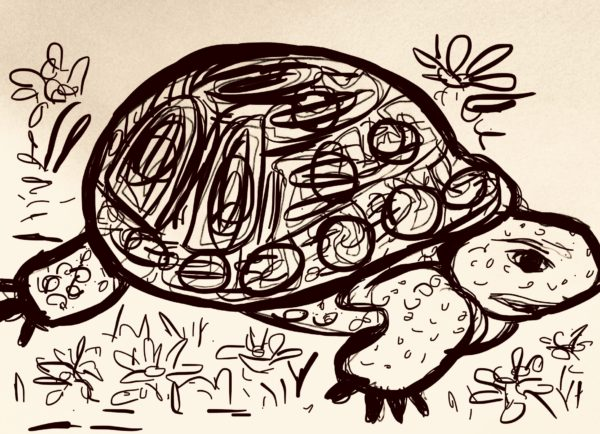 The Tortoise from the theme the tortoise and the Hare by Juliette Goddard