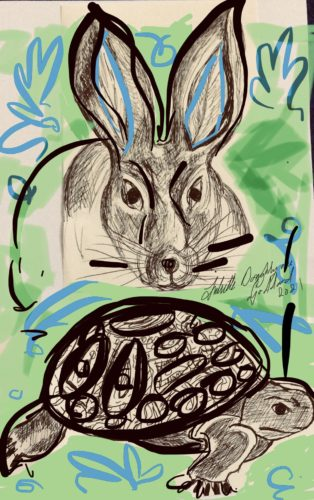 Tortoise and the Hare green series by Juliette Goddard